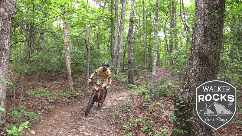 Amazing mountain bike trails in Walker County, GA, home of walkerrocks.com