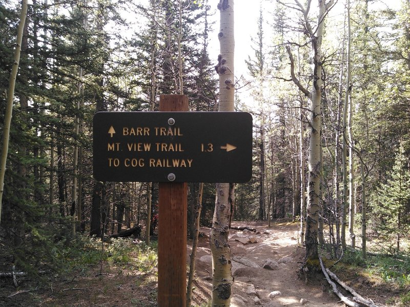 The Mt. View Trail
