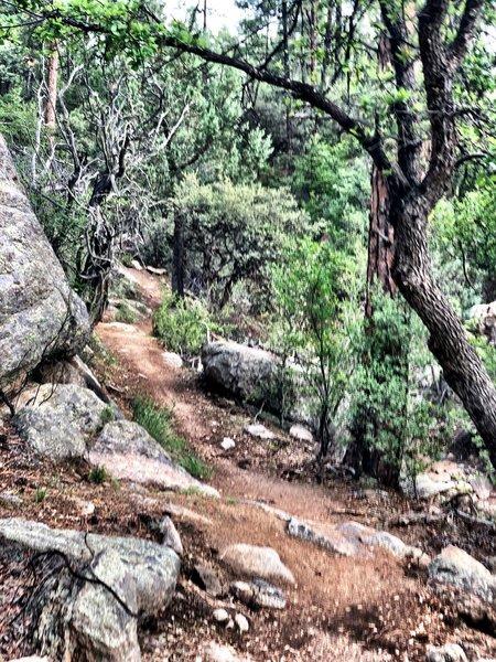 A few more rocks