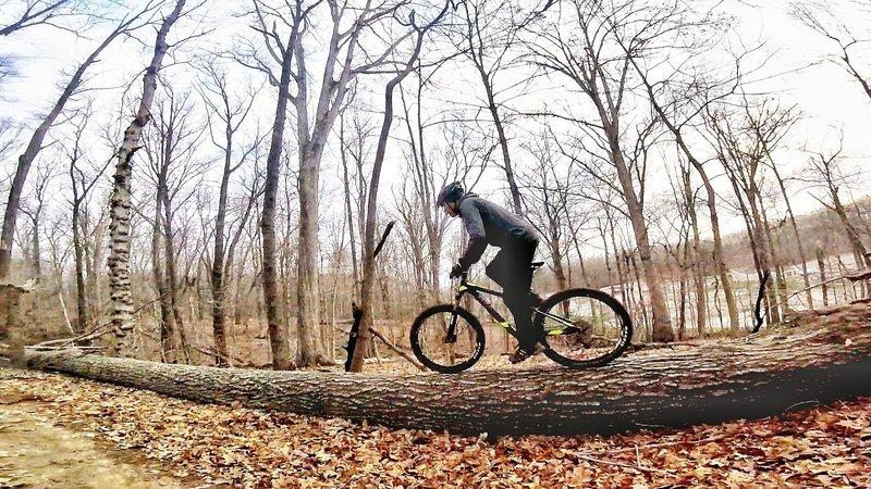 Log-ride