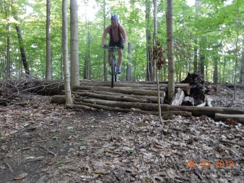 There are several tall log crossings and each one also has a bypass trail around it if you're not 'feeling it' on that day.