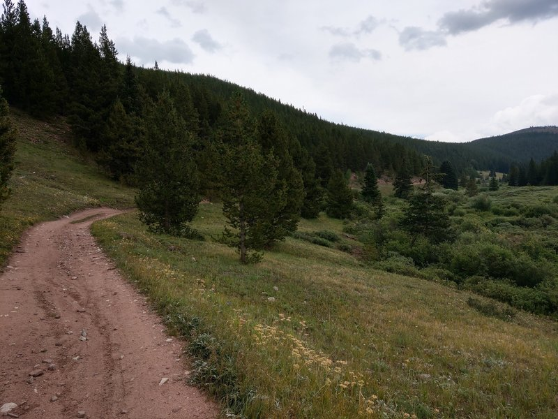 Upper meadow before starting the switchbacks over the saddle