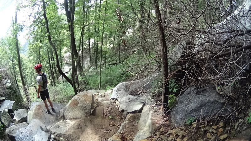 Rocky outcrop with views from the spur trail.