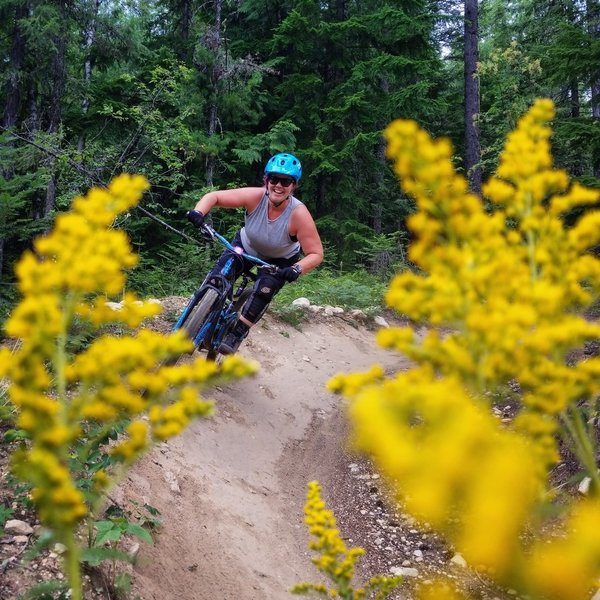 Cruising through the wild flowers and berms.