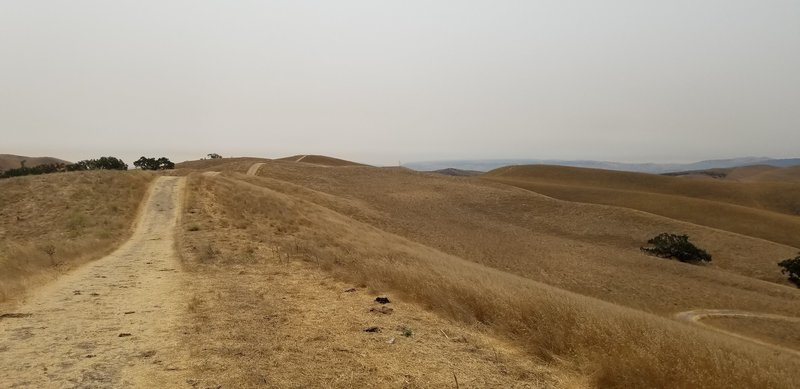 A smoky day on Short Ridge