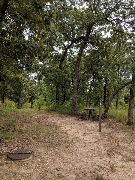 The beginning of Trail 4. Complete with picnic table....
