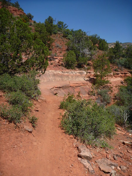 View of the banked rock ledge