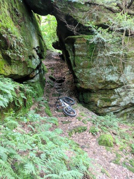 Challenging rock garden