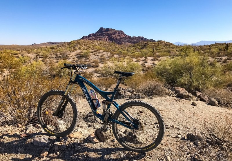 TRW Trail with Red Mountain in the background. Mesa, Arizona