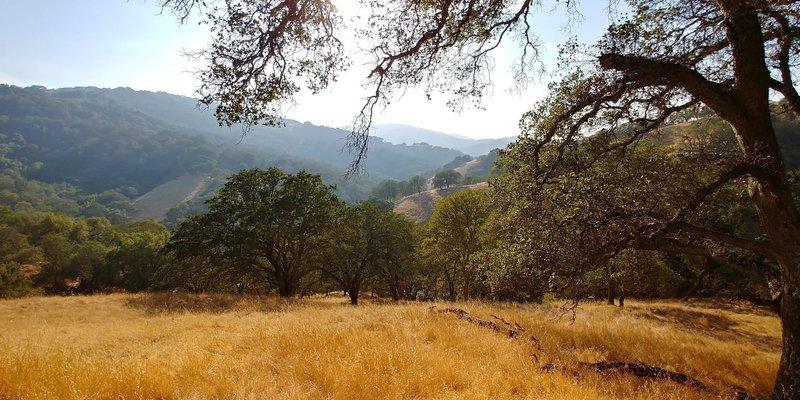 Lisa Killough Trail