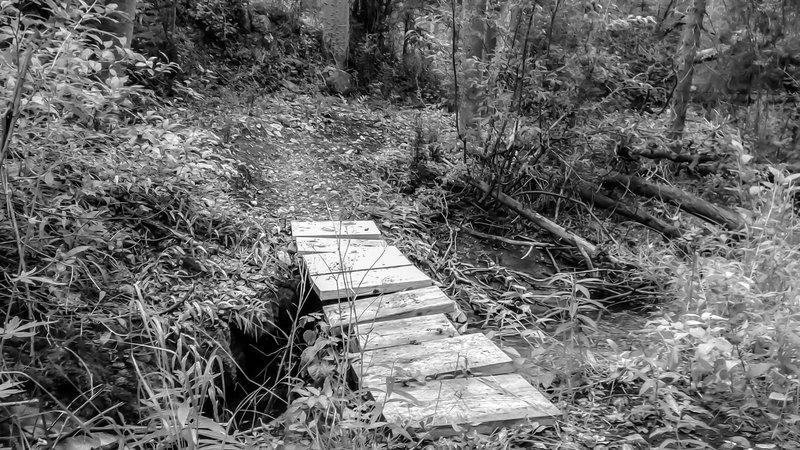One of the bridges crossin the stream
