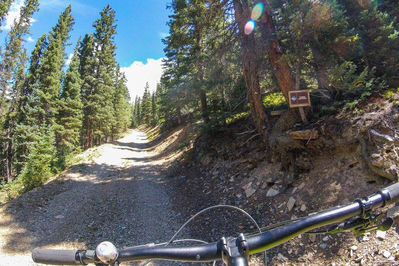 Third climb along Bull of the Woods road