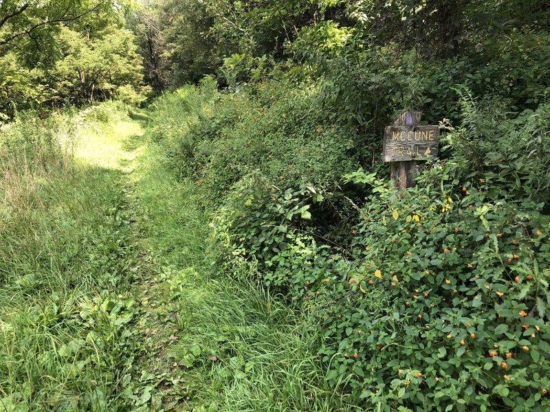 McCune Trail