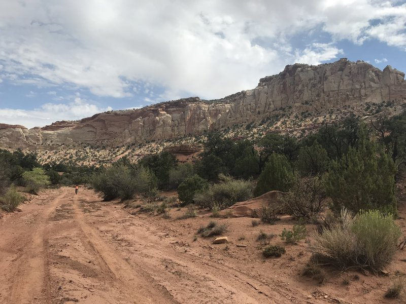 Most of the trail is doubletrack w/ some technical spots. The views however are incredible.