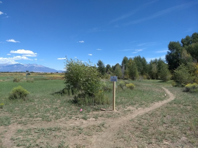 Passing through a disc golf hole on the North end of the trail.