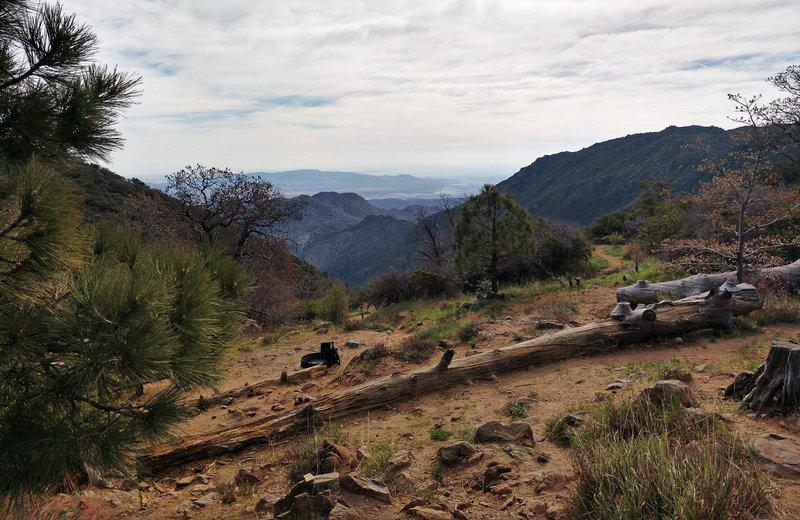 Desert View picnic area.