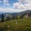 Top of Schweitzer Mountain.