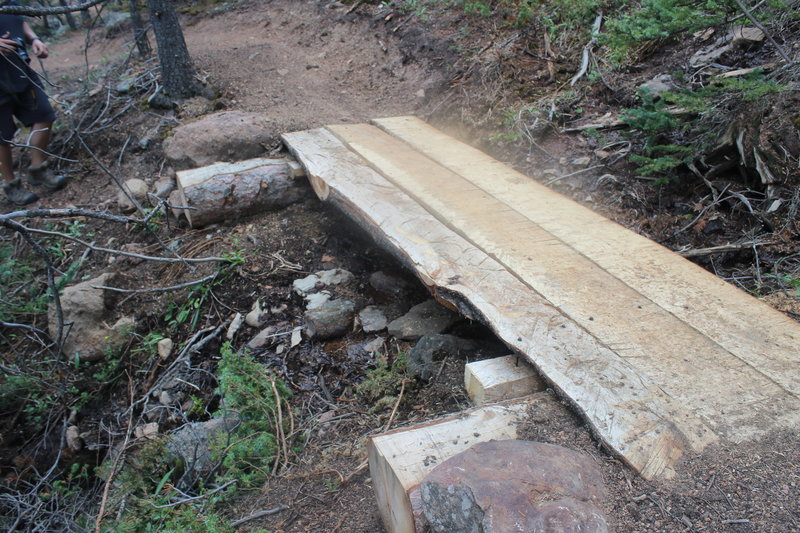 Hand built bridge on Lake Moraine Trail