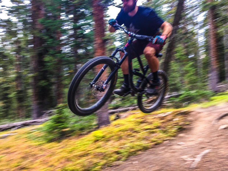 Lots of pines and loam that encourages having fun and getting funky on the CT down from Georgia Pass!