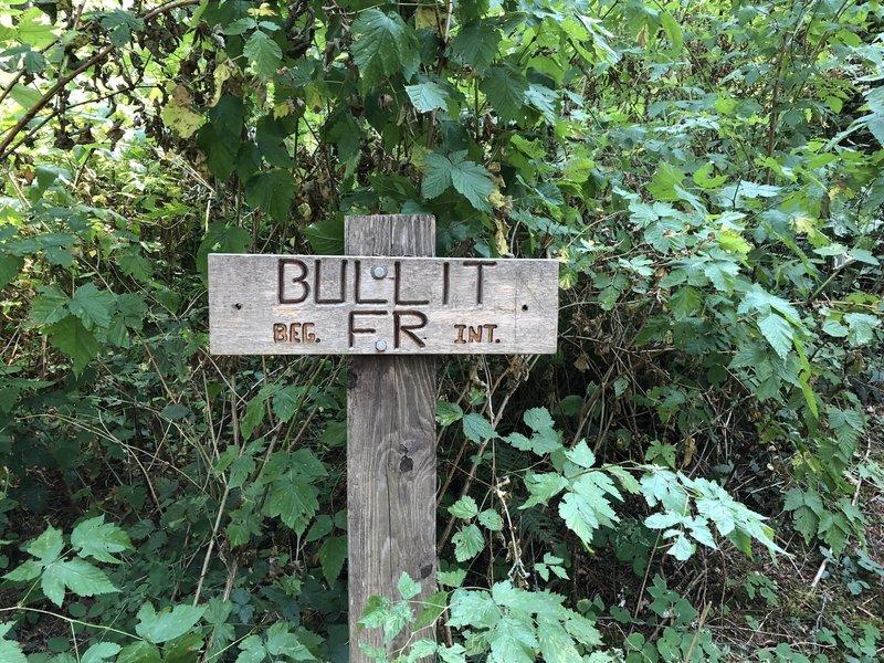 Bullit Entry