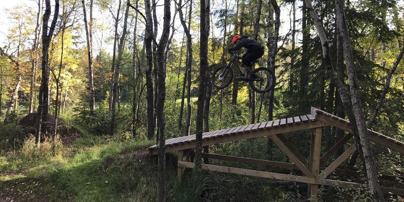 Riding a wooden Drop feature in the Blue Jump line is a blast.