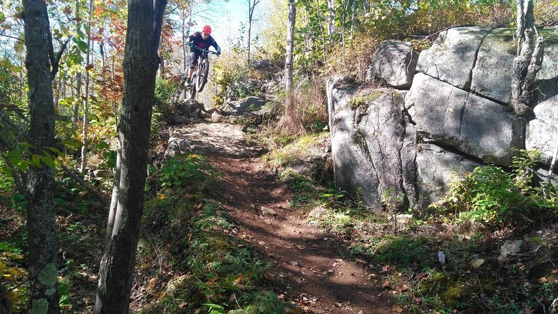 One of the fun drops in this section before a large rock face slopped decent!