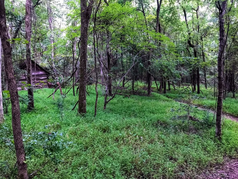 Log cabin farmhouse on the trail.