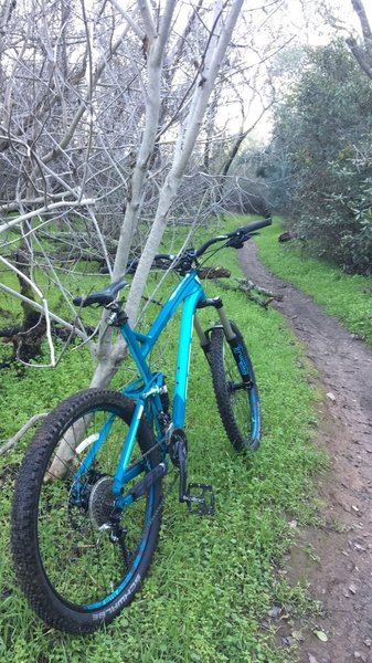 exploring new trails that are hard to find