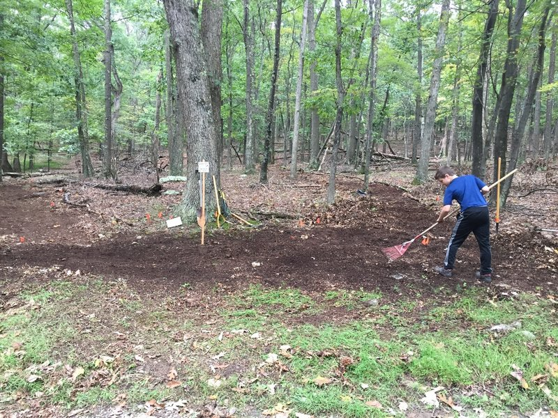 Trailhead and hub for all Cacapon mountain bike trails at Batt Picnic Area parking lot entrance.