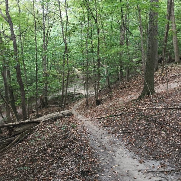 """Exiting """"middle ridge"""" toward marker 16, right before you make a 180 degree turn at the end of this decent."""