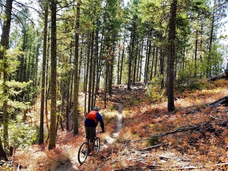 Heading into the last few steeper berms.