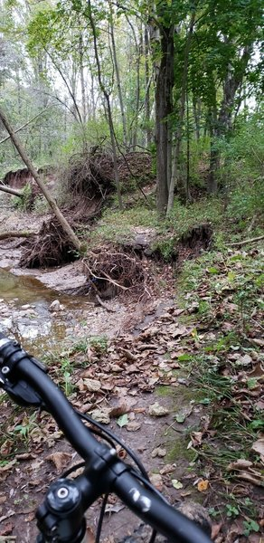 I understand the trail may have crossed the creek a few times previously but has now washed away on both sides leaving up to 30-ft drops on either side taking the tail with it BEWARE!