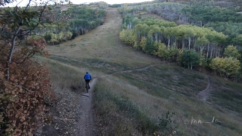 Jenni's Trail. Easy climb for beginners, beautiful views for everyone!