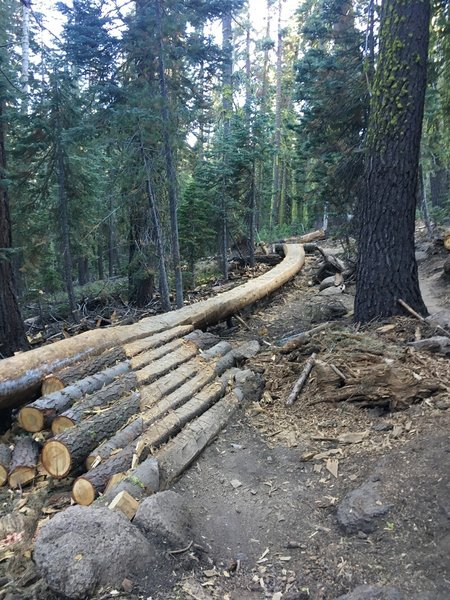 The Log Ride.