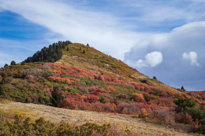 Sardine Peak, near Ogden Utah