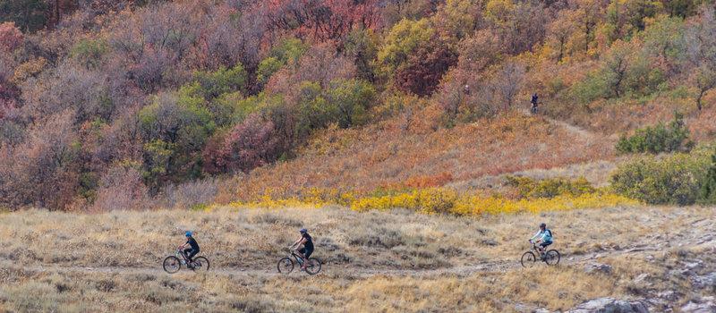 Riders making their way up Sardine Peak trail near Ogden, Utah.
