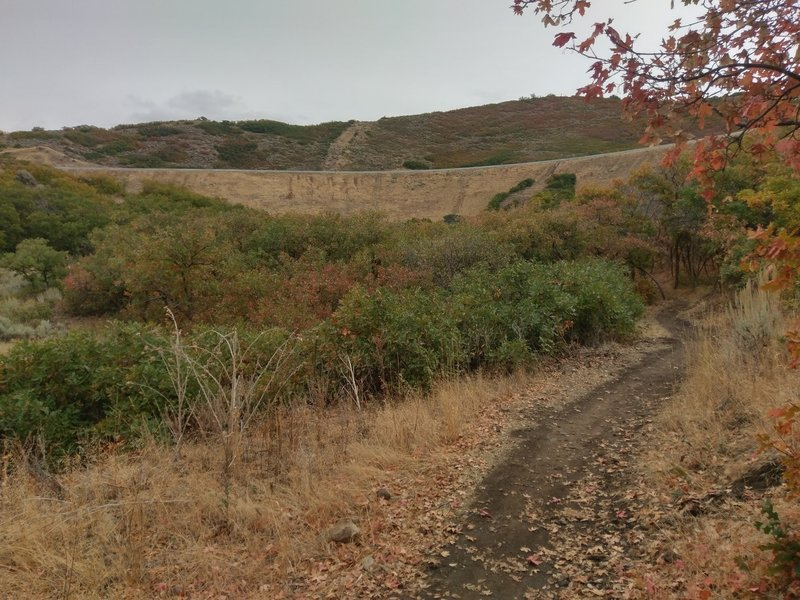 Looking east along the Little Valley Loop Trail
