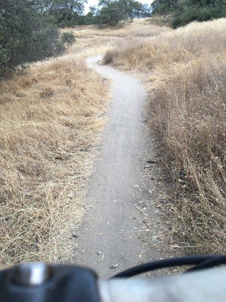 Lake Folsom trail