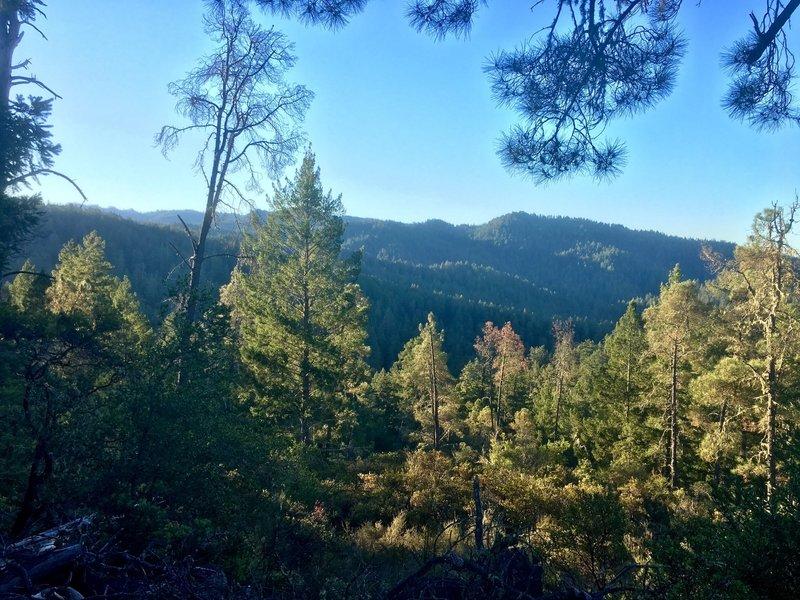 Ridge views from Gazos Creek Road