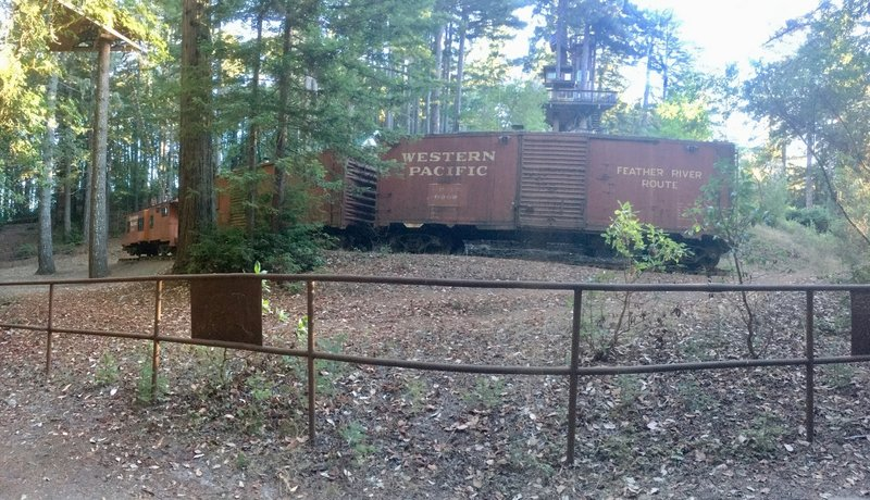 Rail cars in the middle of the park?