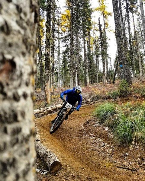Tacky fall dirt up at Mt Spokane.