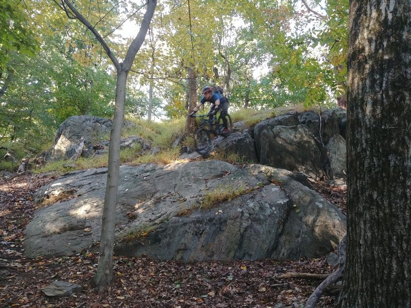 Rock roller on Sprain Ridge Loop