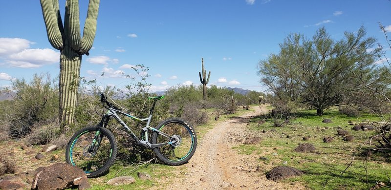 Did not anticipate this much fun on a ride near Scottsdale (Badger Brawl). Honestly, ripping fun!