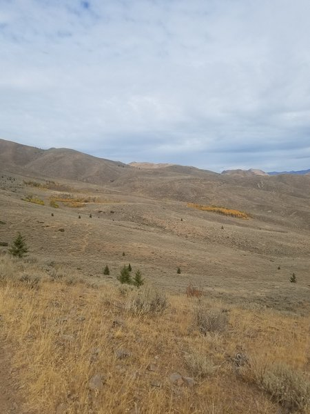 Terrain crossed while riding Hidden Valley. Fall trees are where $ at.