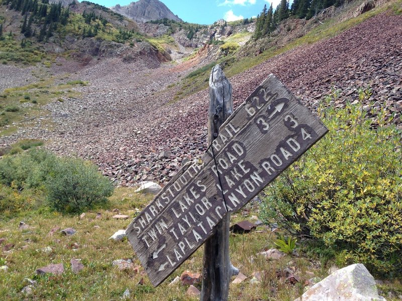Junction of Sharkstooth Trail and Bear Creek Trail.