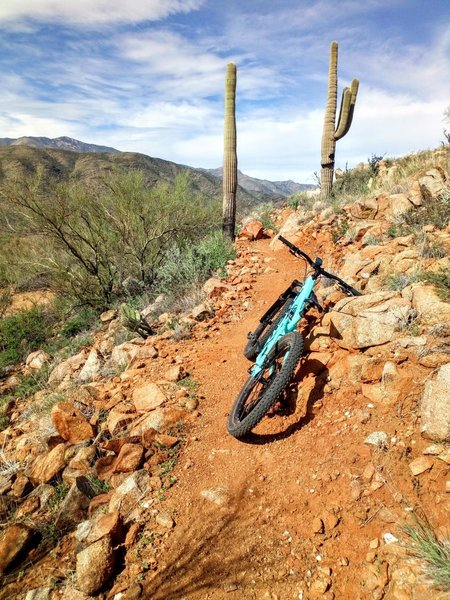Going the wrong way on the Black Canyon Trail.