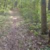 Bike/Ski trail behind Allegan State Game Area Headquarters