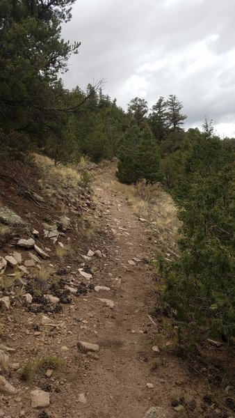 The trail gets rocky and steep here.