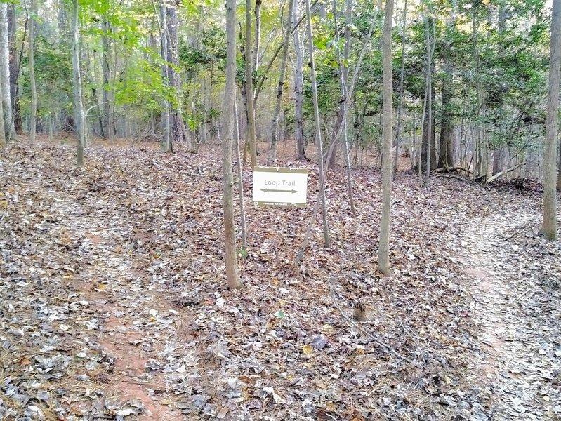 Trail split for main loop