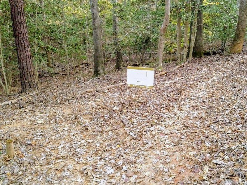 Trail split for extension loop
